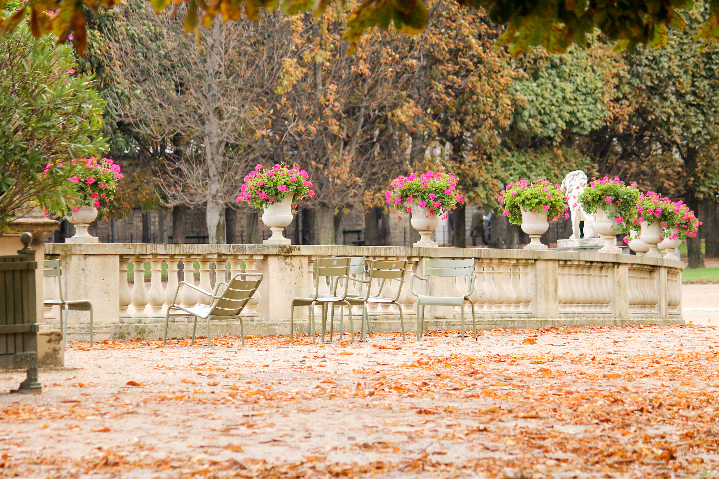 Fall in Paris by Everyday Parisian