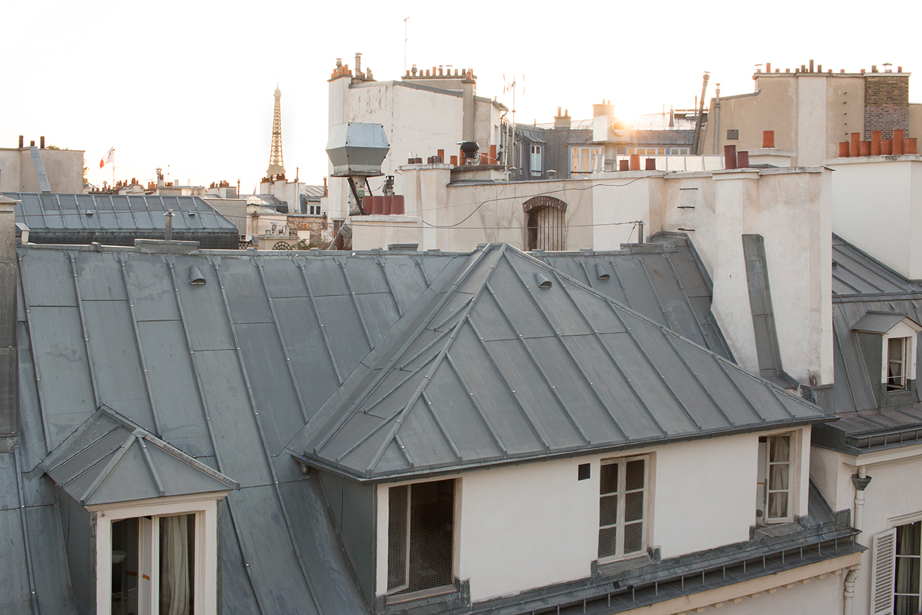 paris rooftops and eiffel tower view by rebecca plotnick
