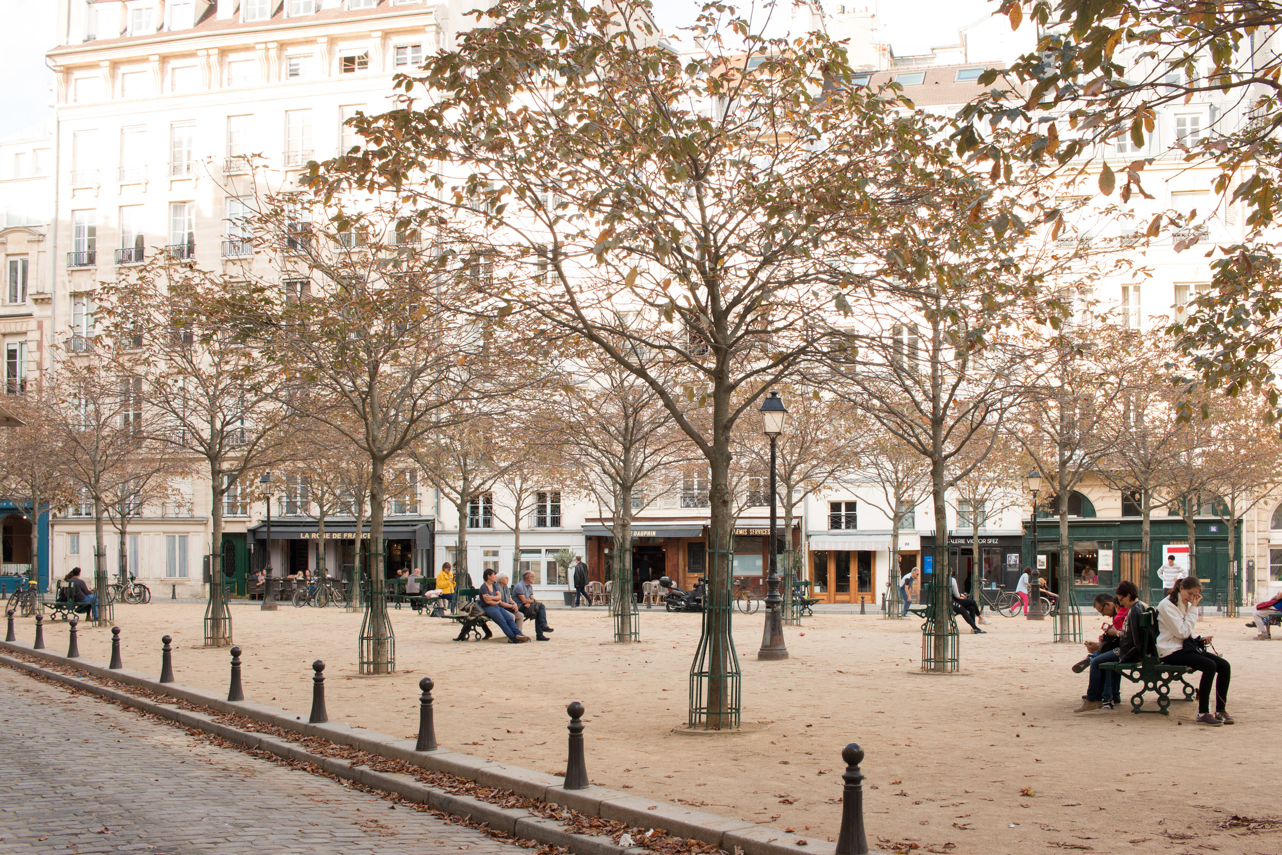 the paris diaries everyday parisian place dauphine paris