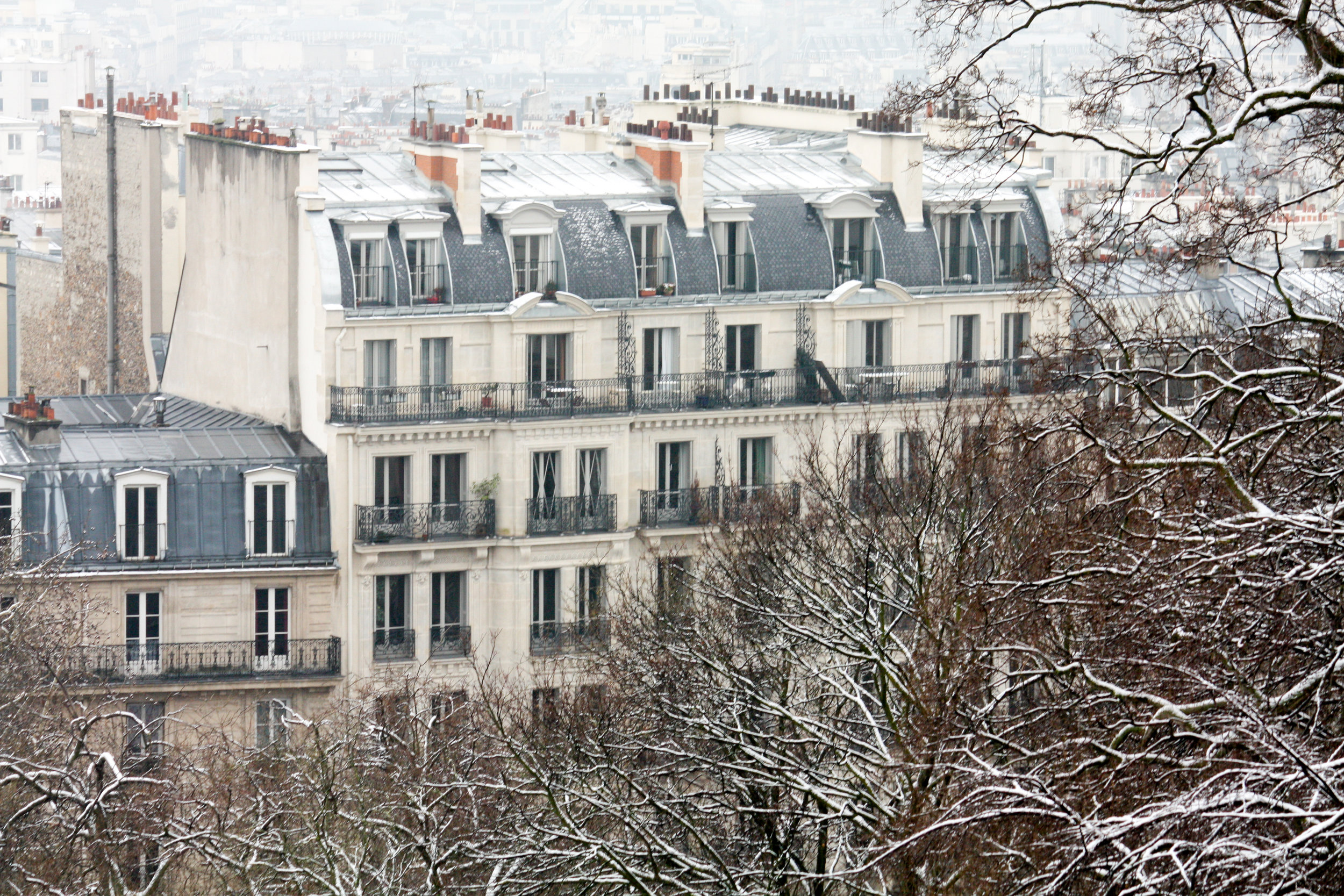 paris in the snow by rebecca plotnick