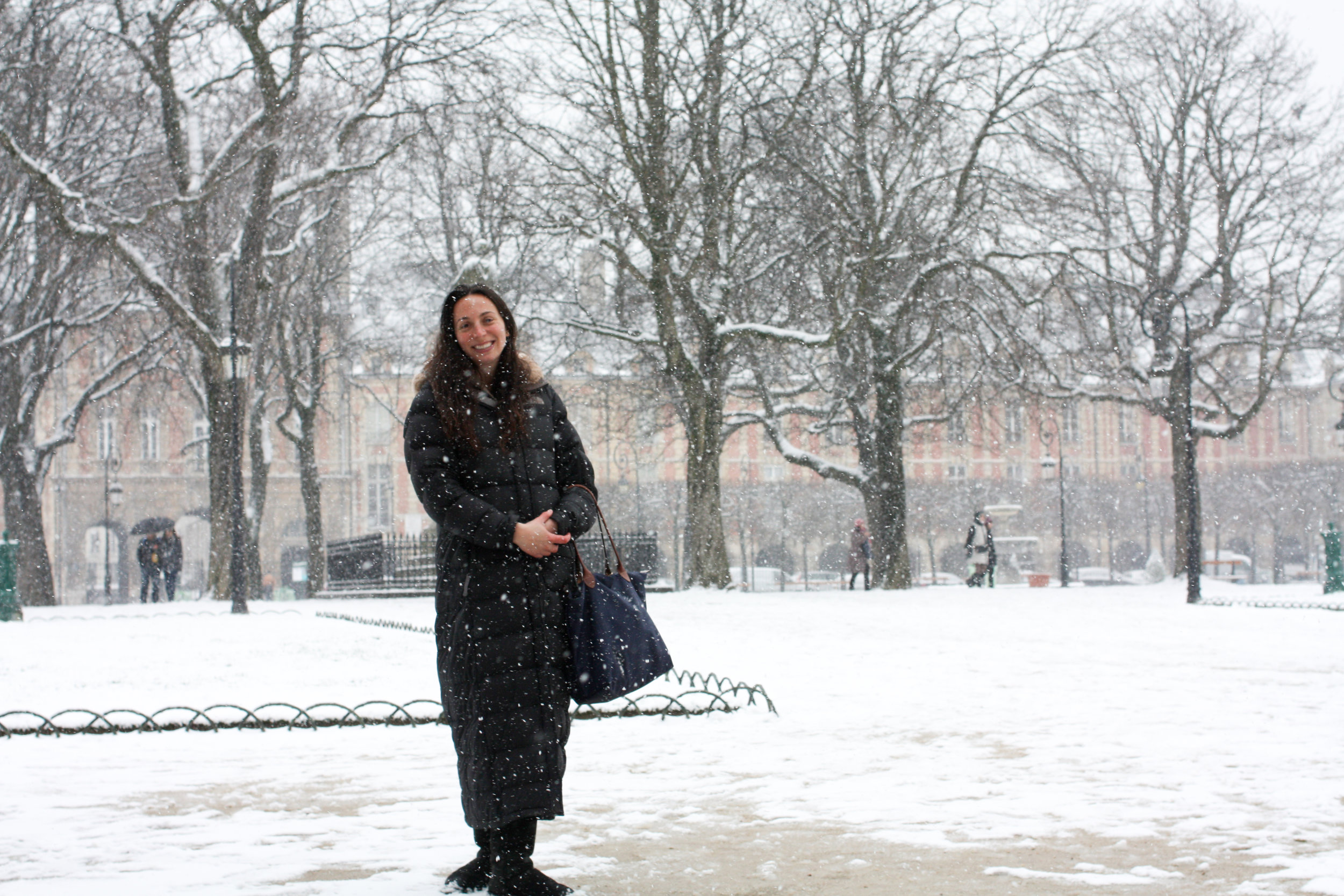 a look at paris in the snow by rebecca plotnick