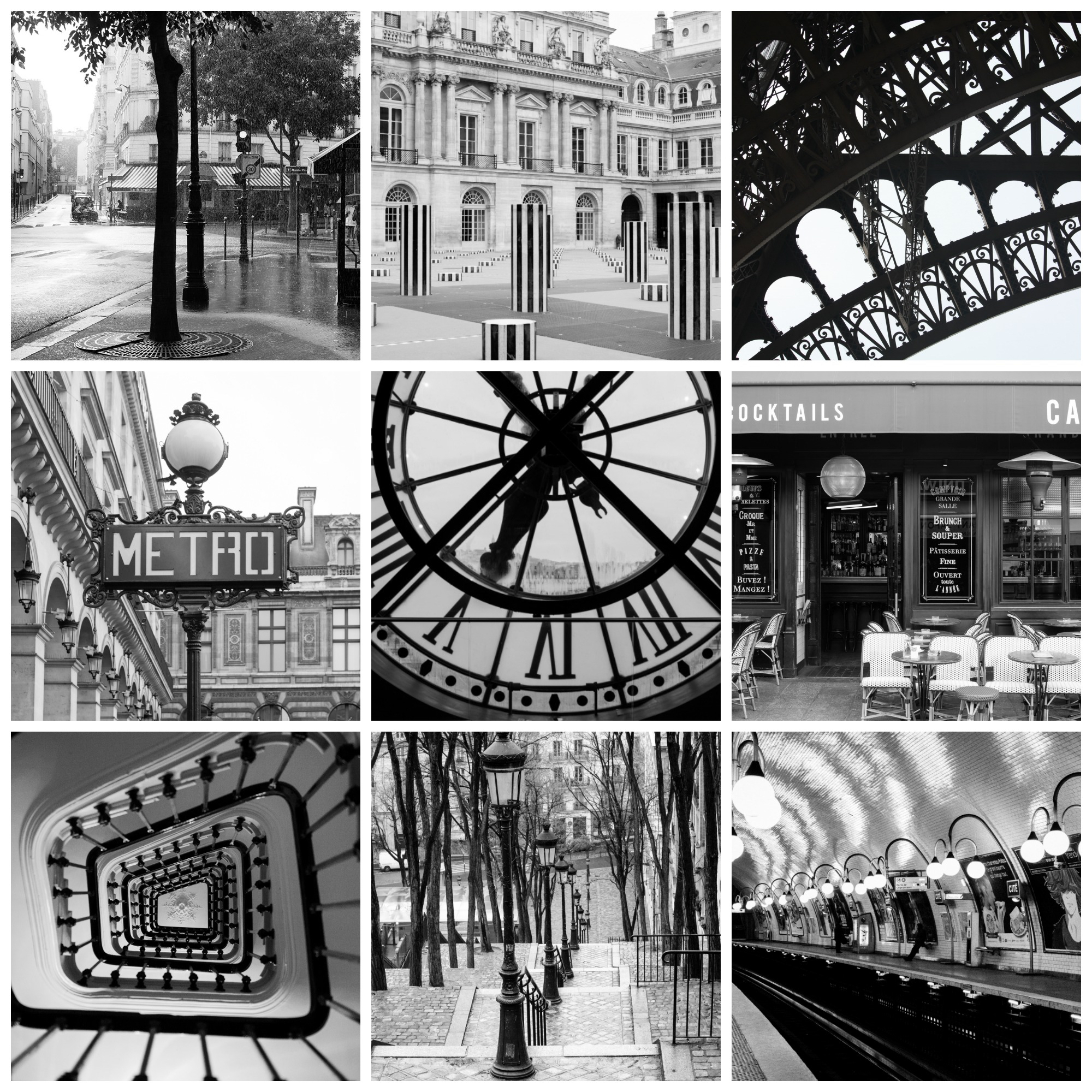 paris in black and white rebecca plotnick