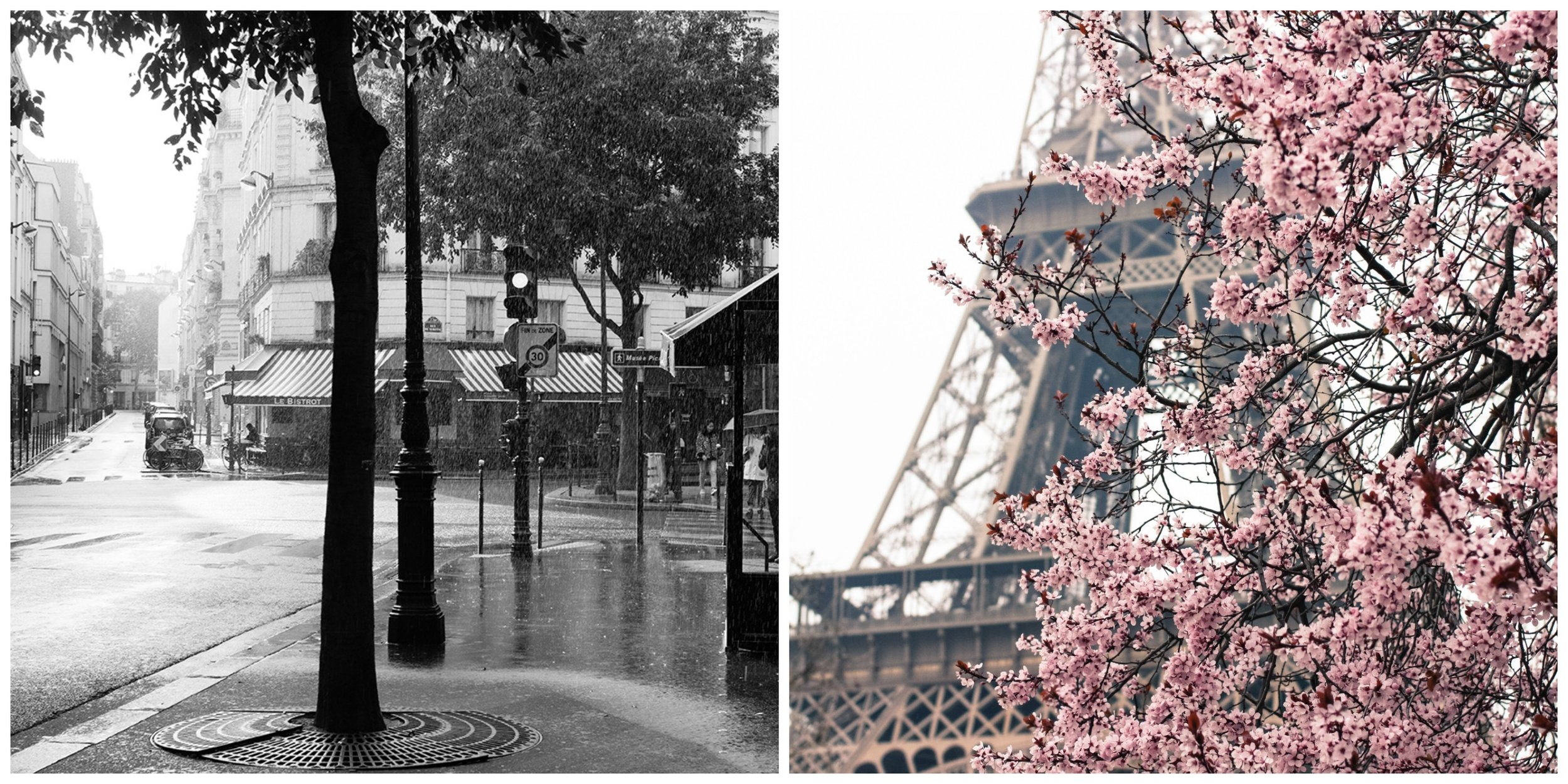rebecca plotnick paris photography