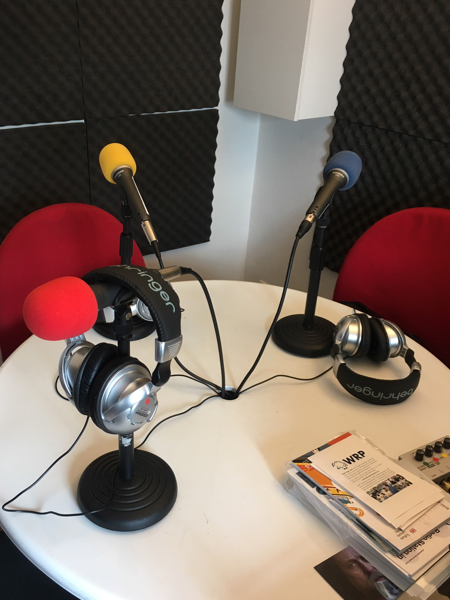 podcast rebecca plotnick
