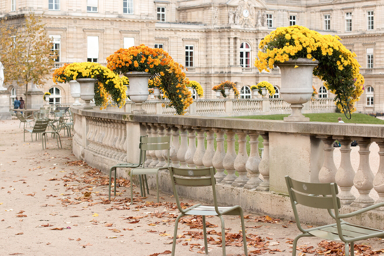 Shop The Colors of Luxembourg Gardens in the Fall Print Here