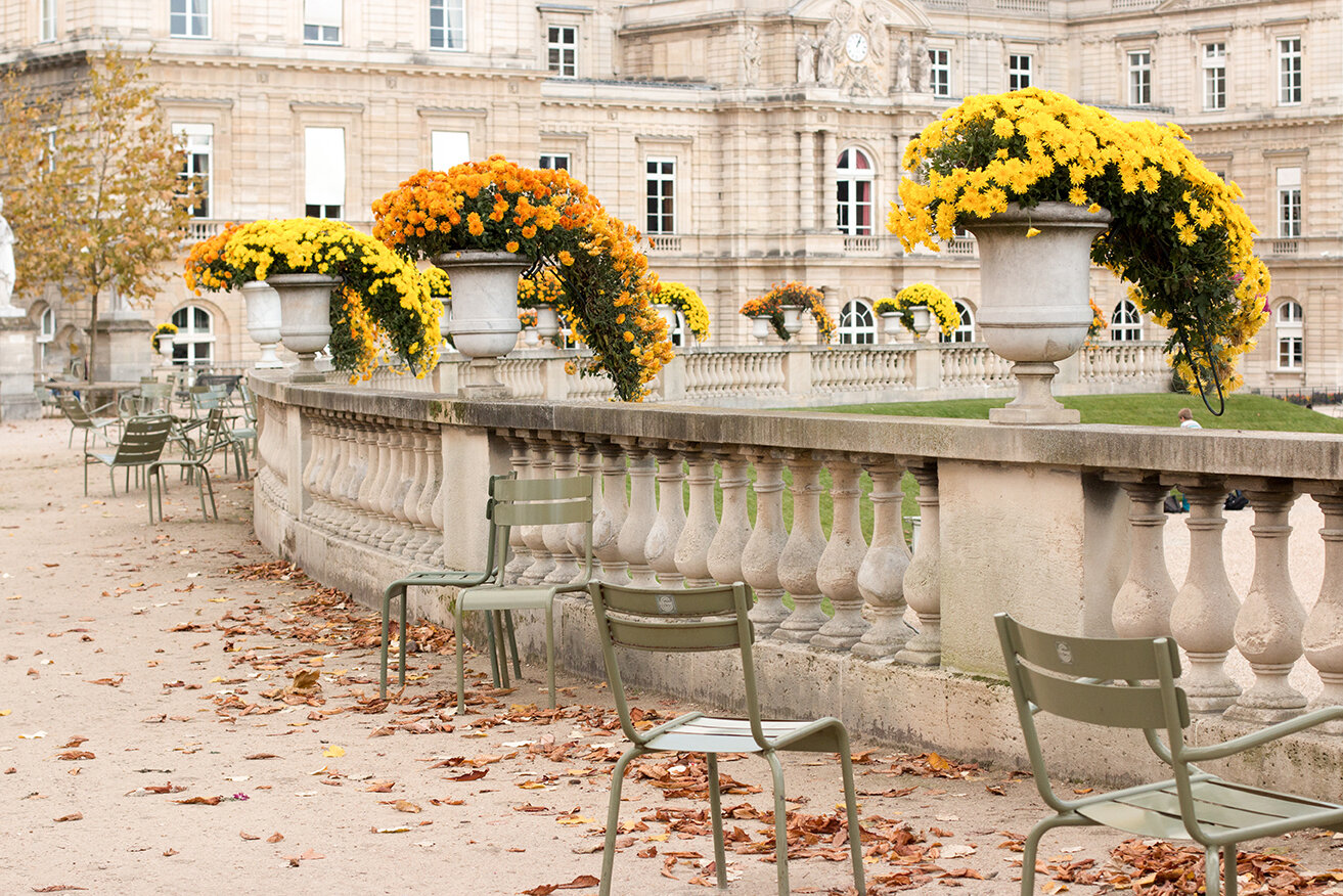 Shop Luxembourg Gardens in the Fall Print Here