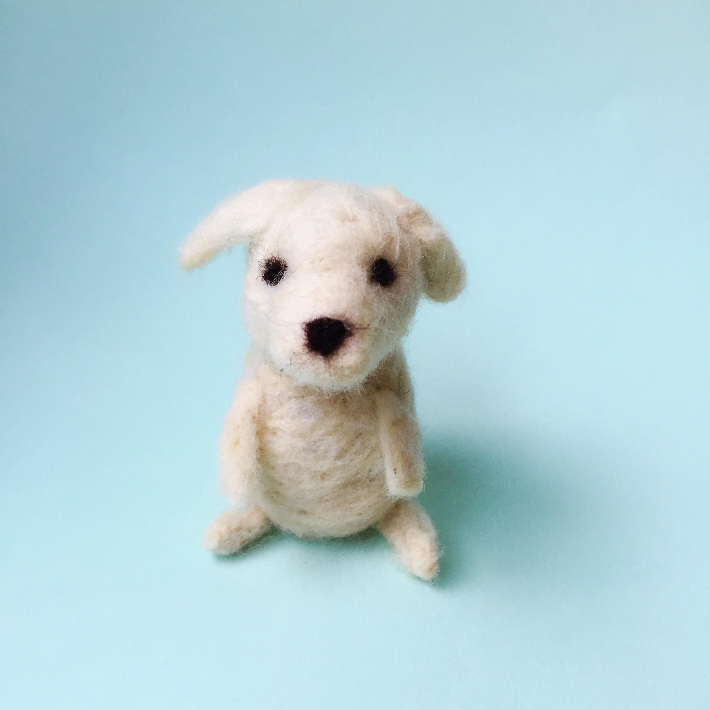 MollieAbleman_NeedleFetling_Pupppy.jpg