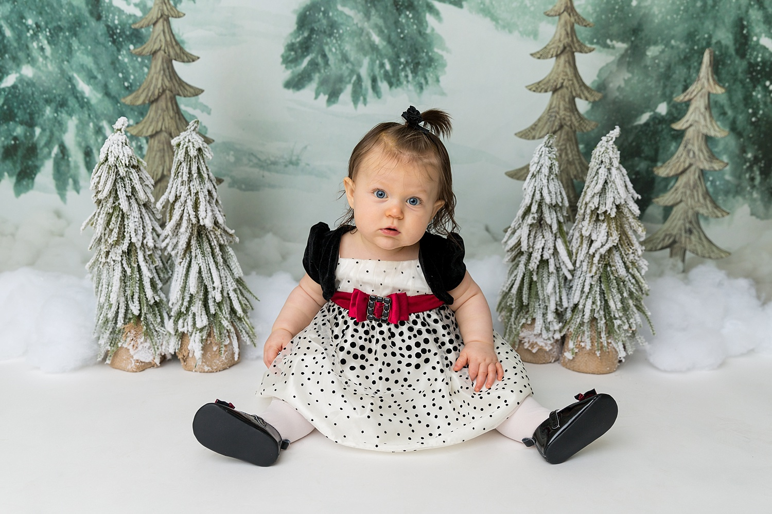 GoggleWorks Studio Reading Pennsylvania Child Family Baby Infant Christmas Photographer