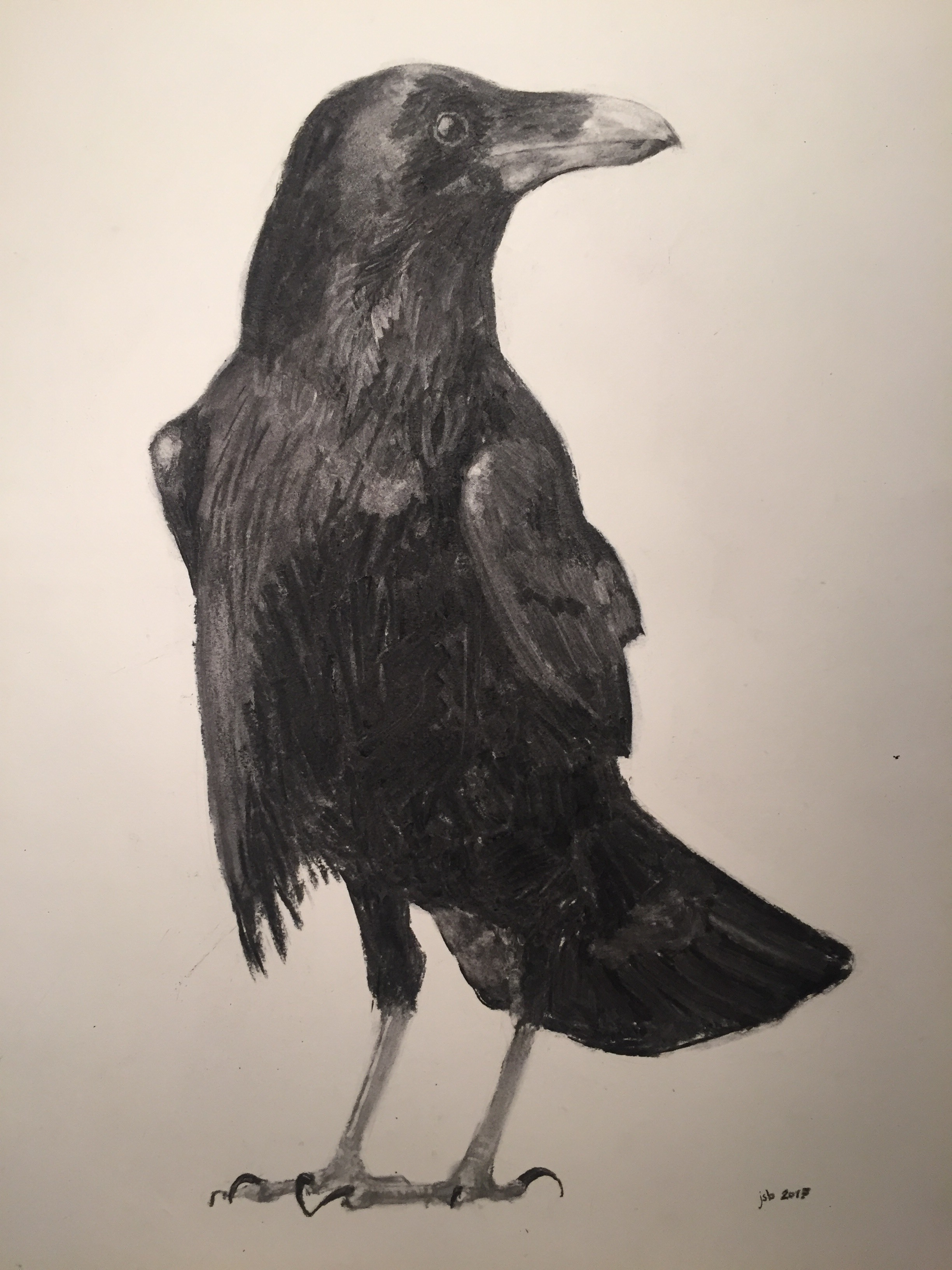 "Raven No. 3; Willow Charcoal on Paper; 18""x24""; 2017"