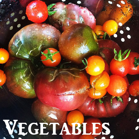gallery_website_veggies.jpg