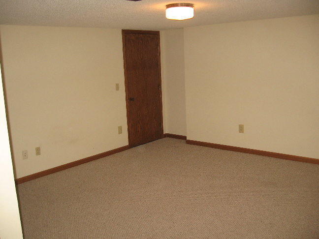 Finished Basement 2.JPG
