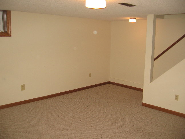 Finished Basement.JPG
