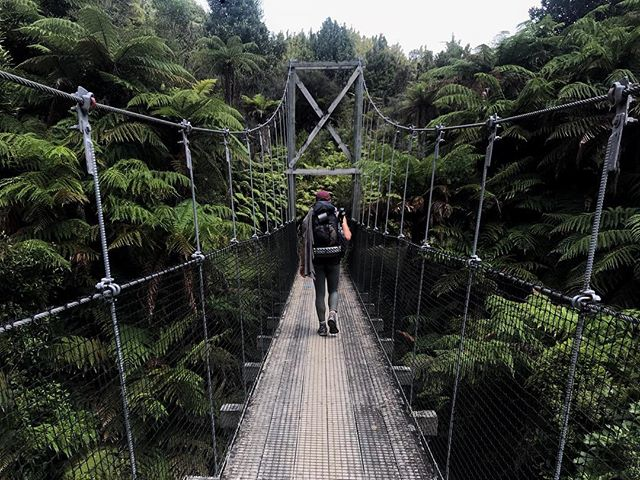 The Timber Trail. Land of swing bridges, 40+ km days, cyclists who refuse to give you a heads up, and hikers napping in the shade. . . . #wonderlustnewzealand #adventure #livesimply #gathernomoss #explorer #travelcouple #trampslife #hike #hikingadventures #hiking #wanderlust #adventurealways #aroundtheworld #newzealand #teararoatrail  #thruhike #wildernessculture #pilgrimandprose #getoutside #sheisnotlost #trekmove #travelstrapped  #adventuretogether #staywild #thelongpathway #swingbridge #cyclepath #timbertrail #foottraffic