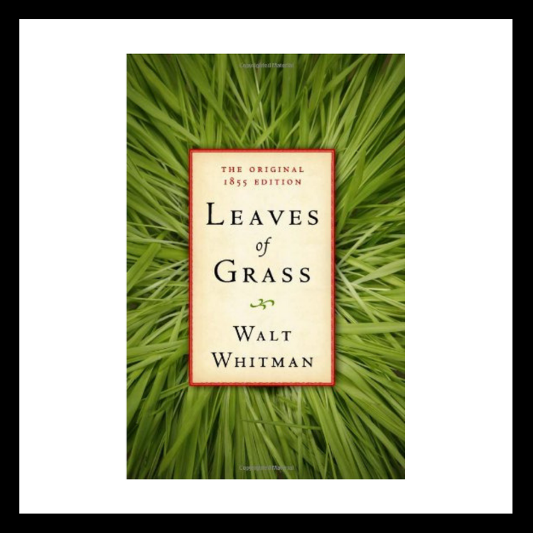 A Blog About Books • Peace to the People • Peace to the People • Blog • Wellness • Entrepreneurship • Mindfulness • Self-Development • Leaves of Grass
