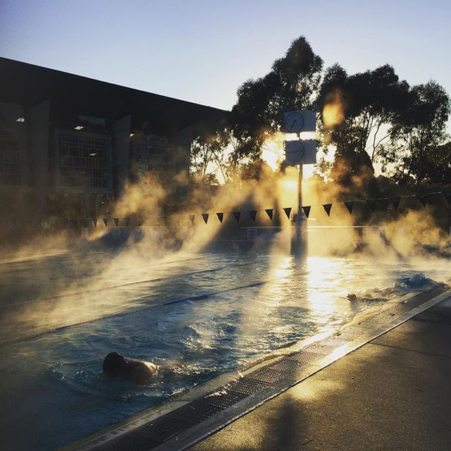 We love our outdoor pool training at Tateswim, especially mornings like this!