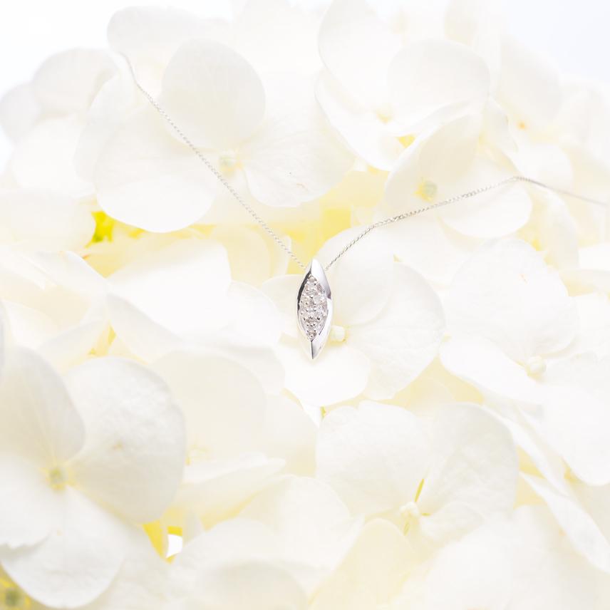 000-white.jpg