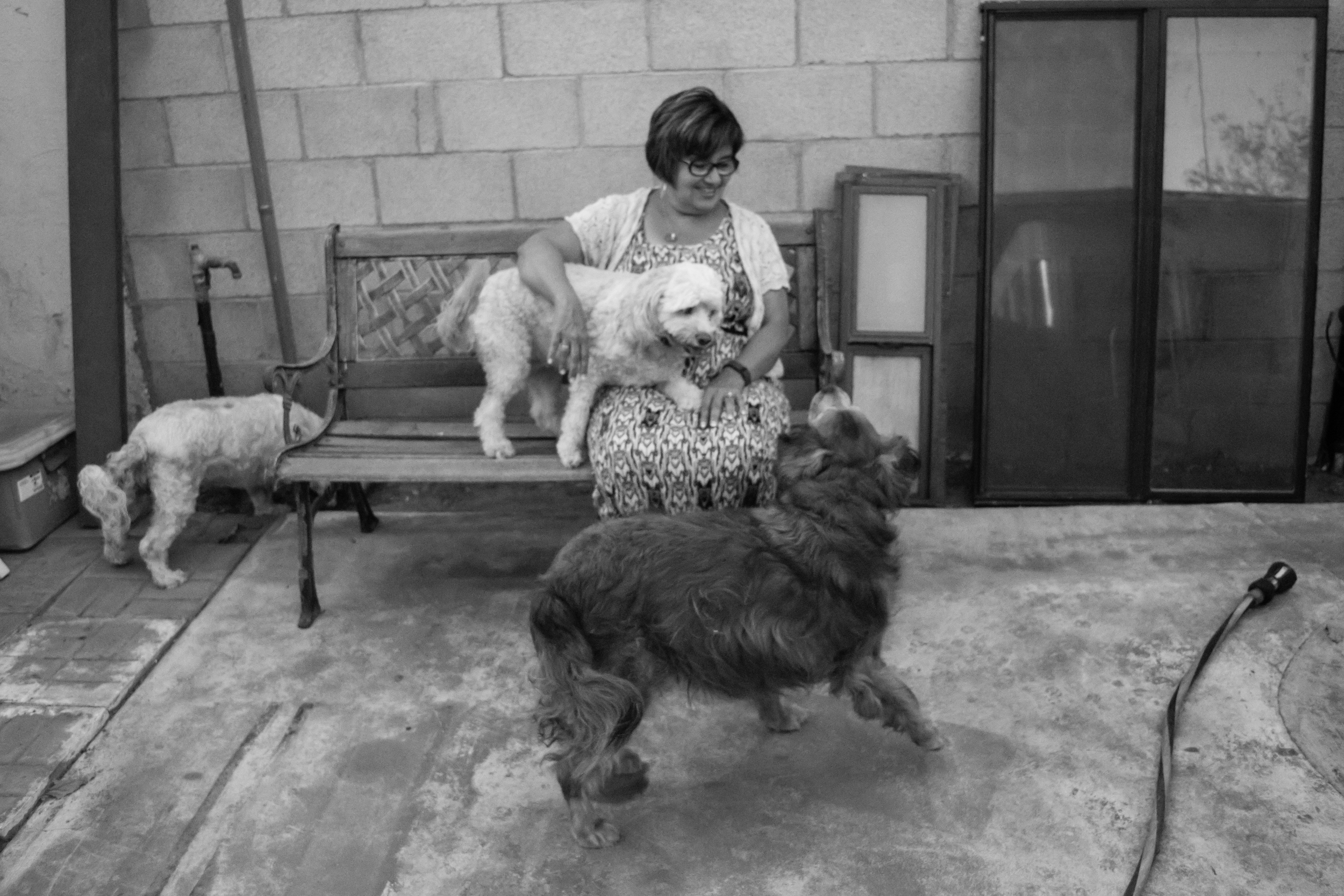 Joyce at her home with her 3 dogs, Minnie, Lucy and Lily.