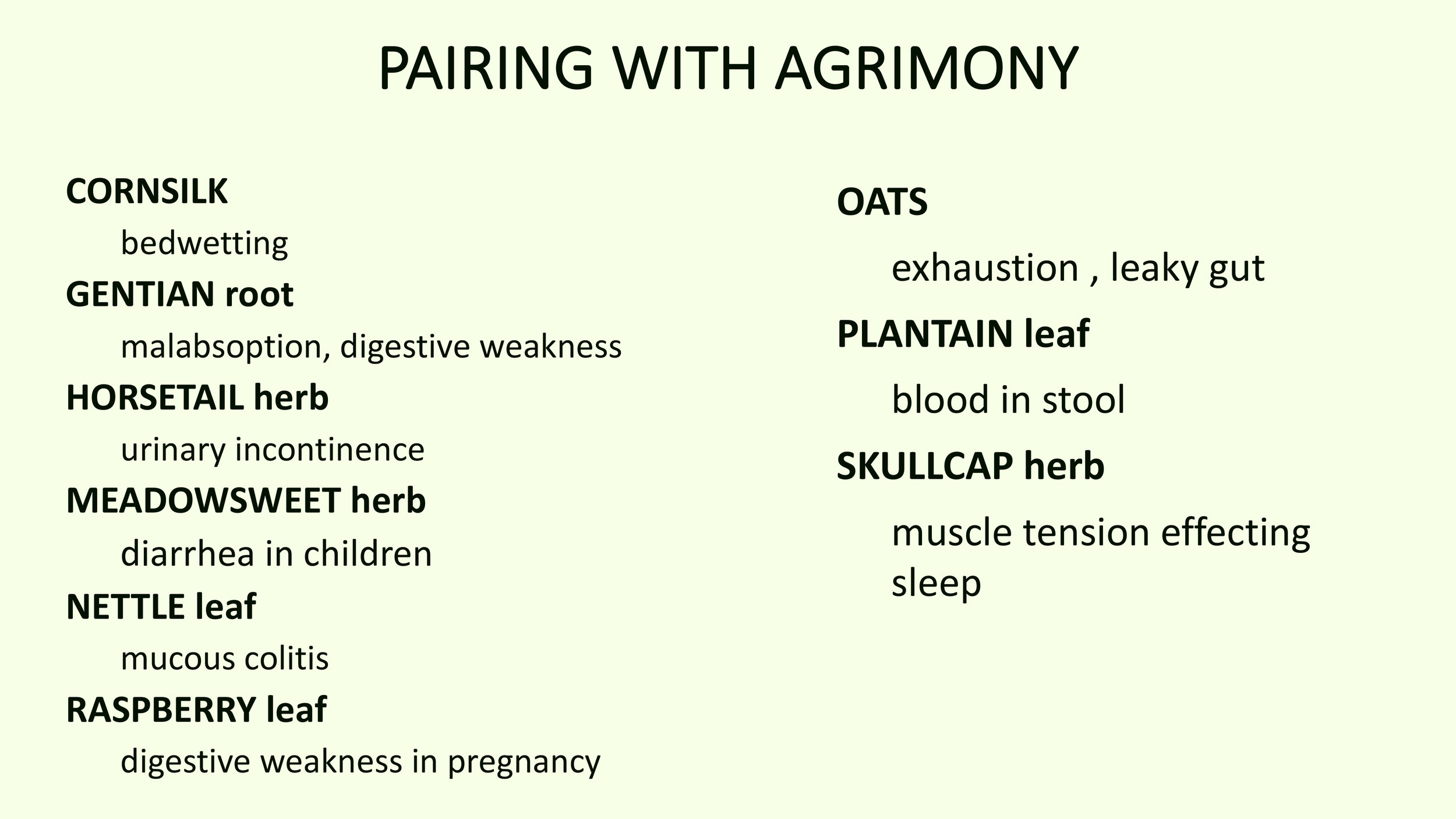 Agrimony_MM (backup)-6.jpg