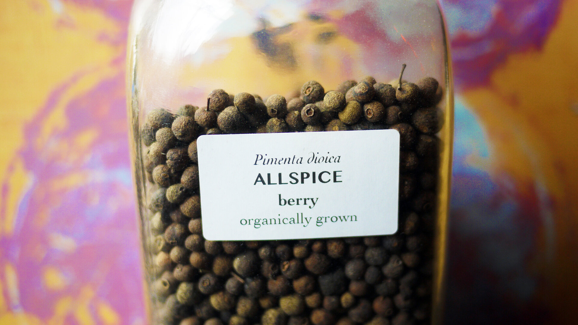 Allspiceberry.jpg