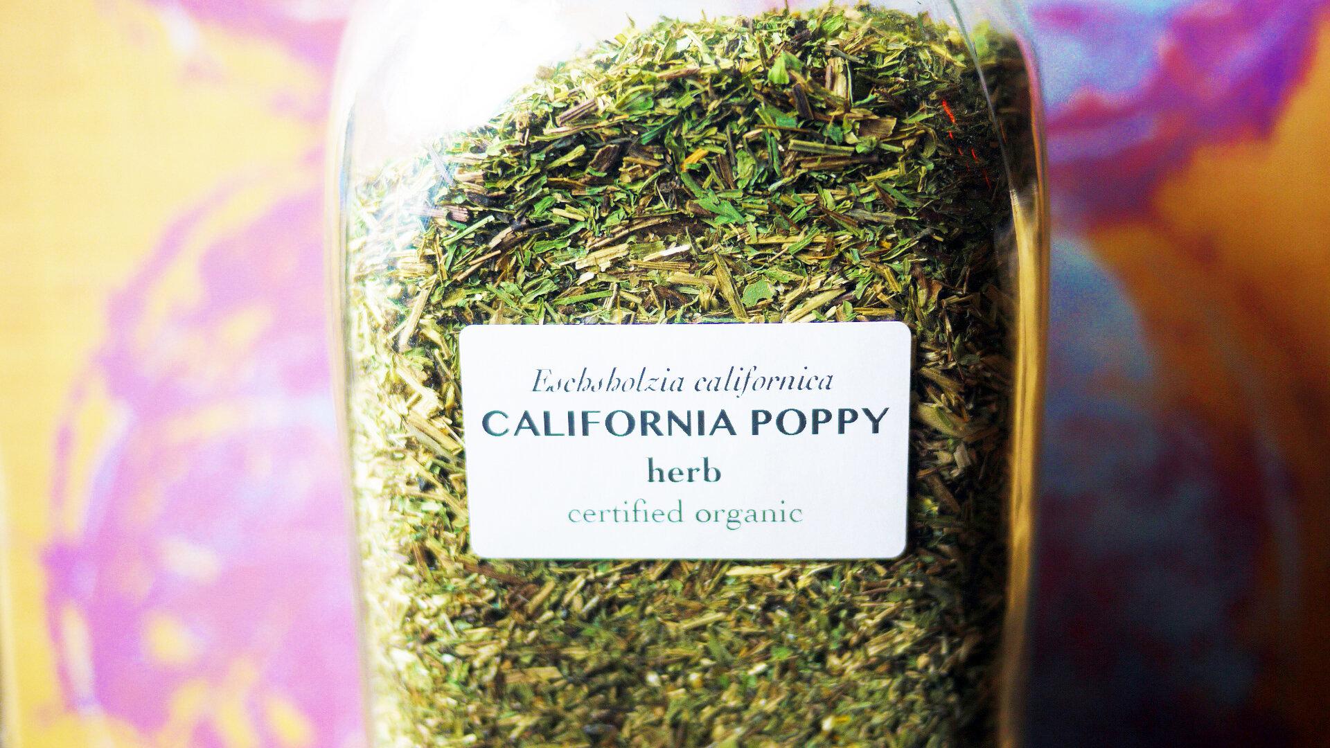 Californiapoppyherb.jpg
