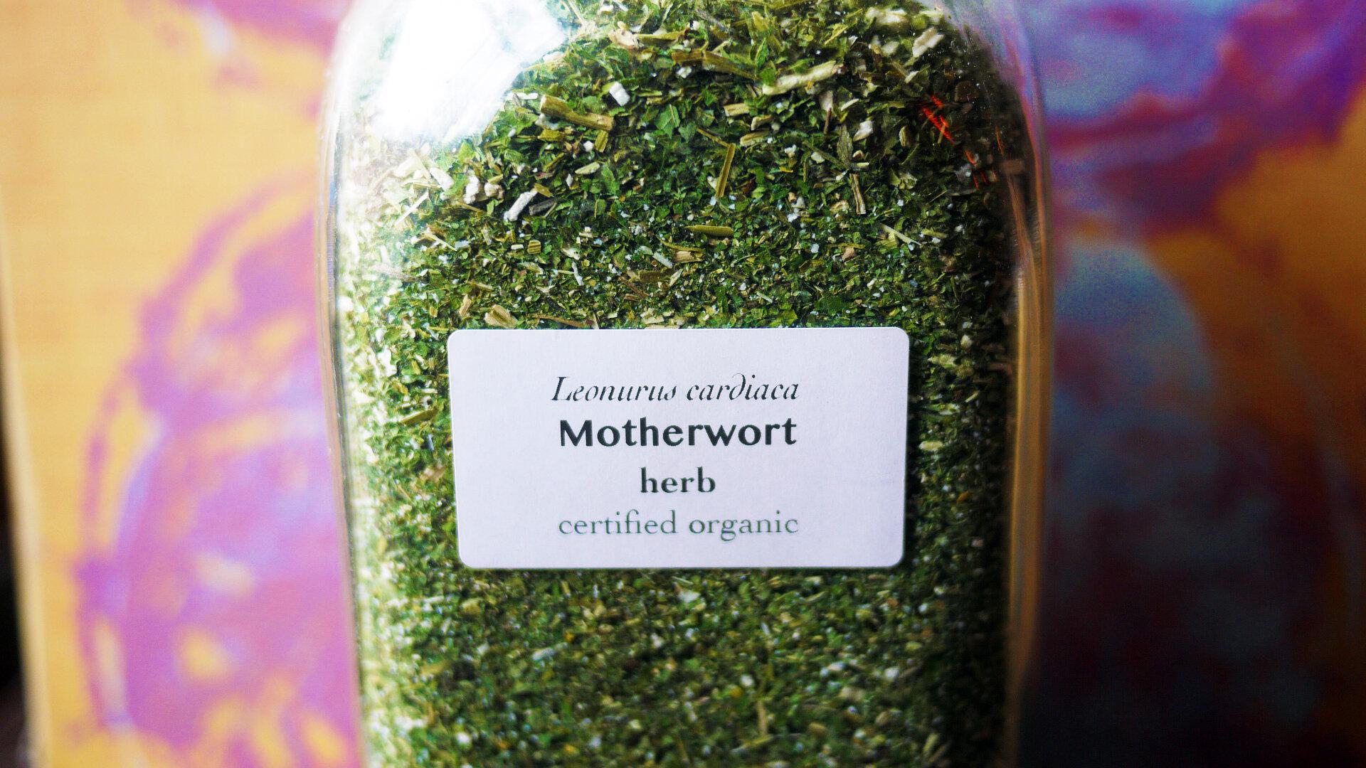 Motherwortherb.jpg