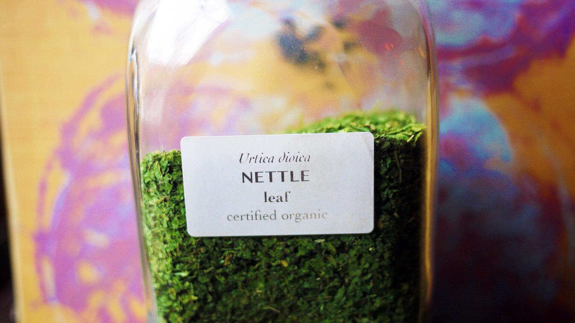 Nettleleaf.jpg