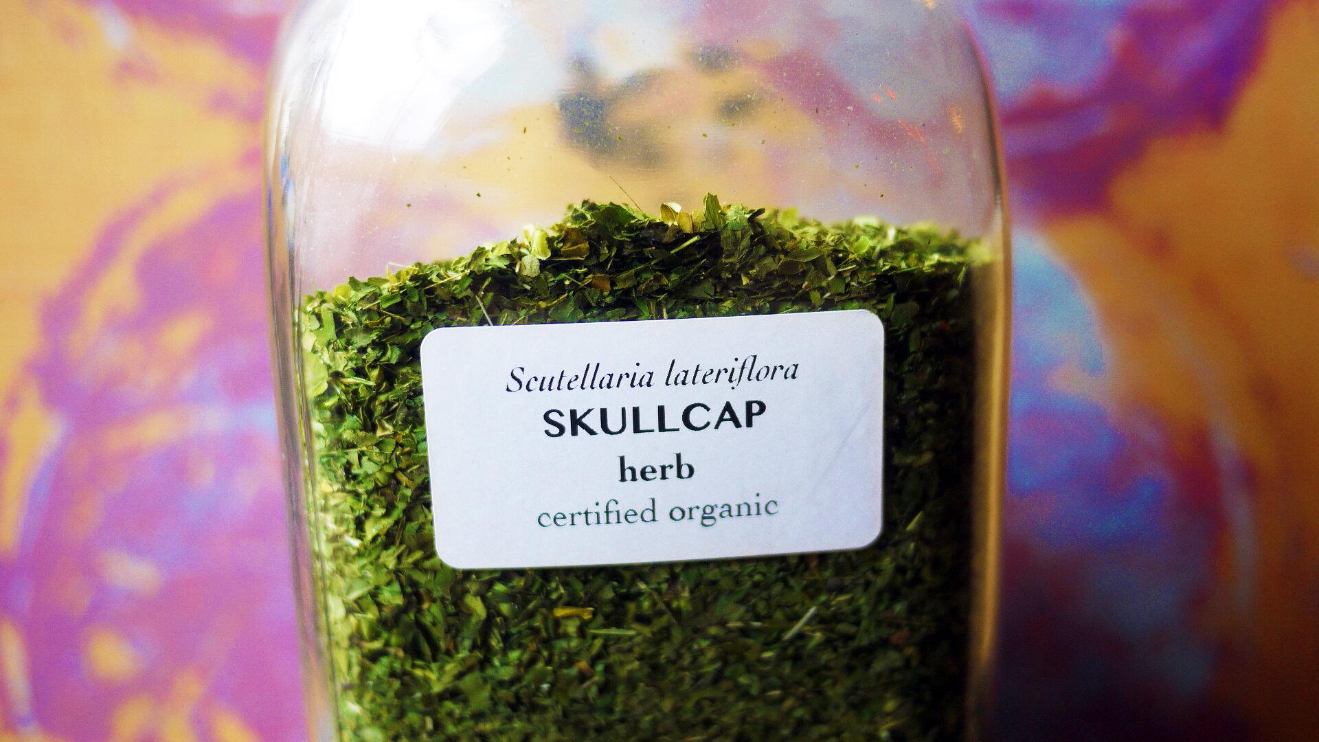 Skullcapherb.jpg
