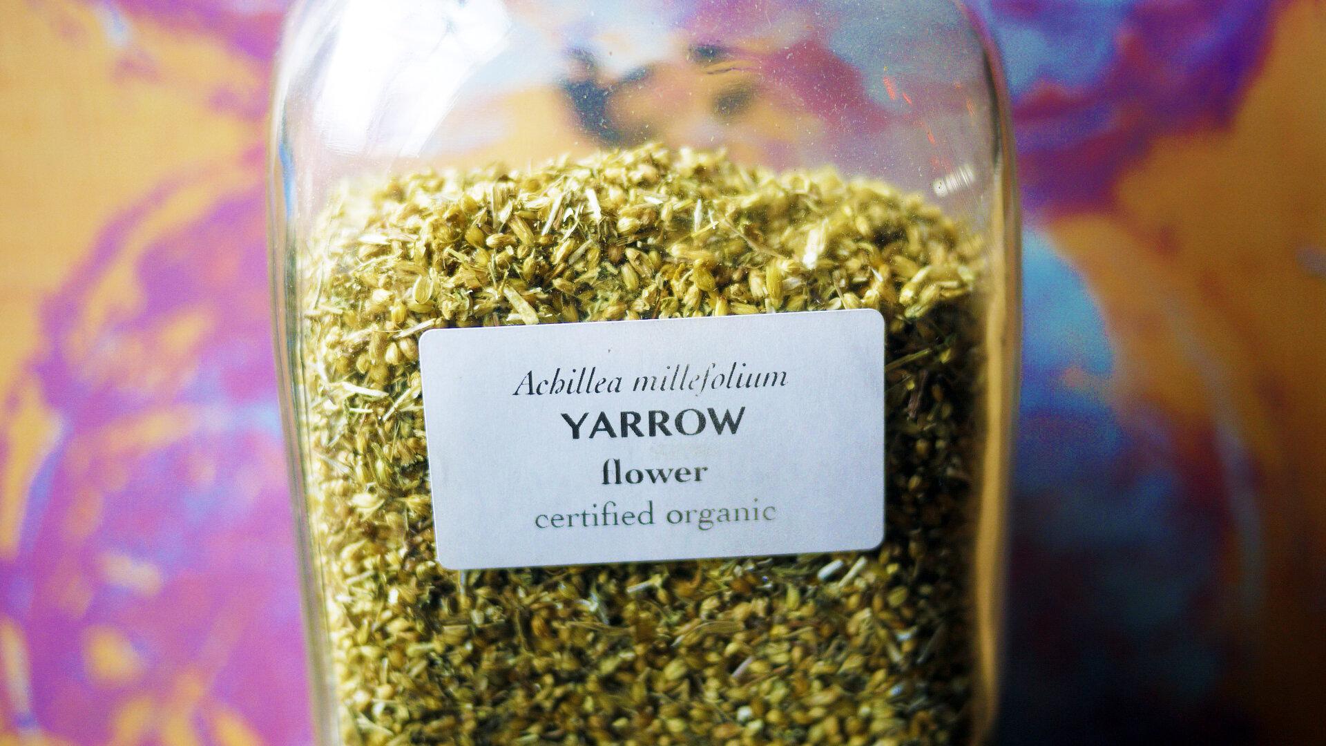 Yarrowflowers.jpg