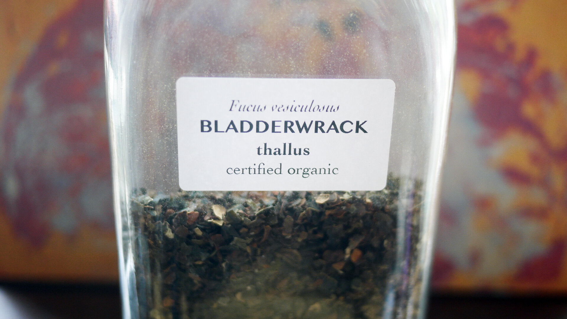 Bladderwrack.jpg