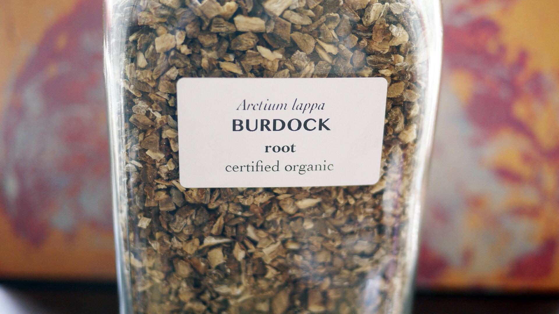 Burdockroot.jpg