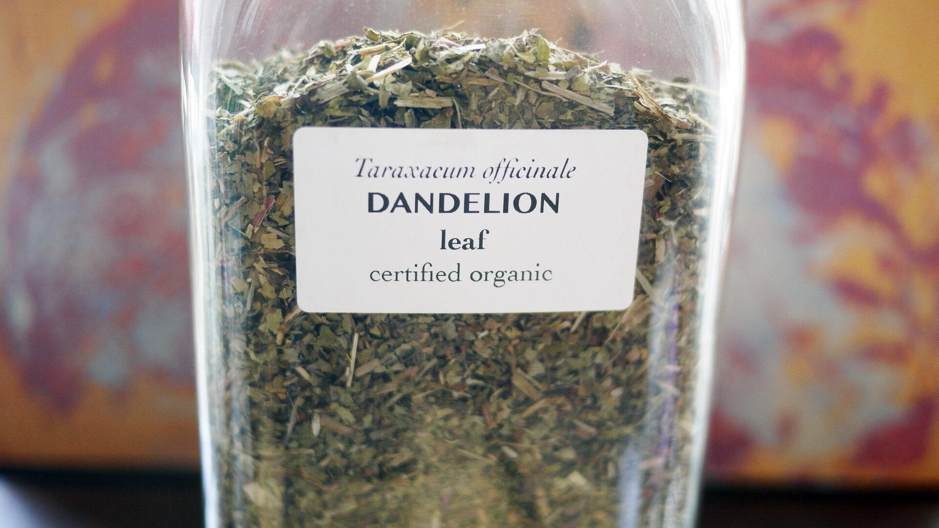 Dandelionleaf.jpg