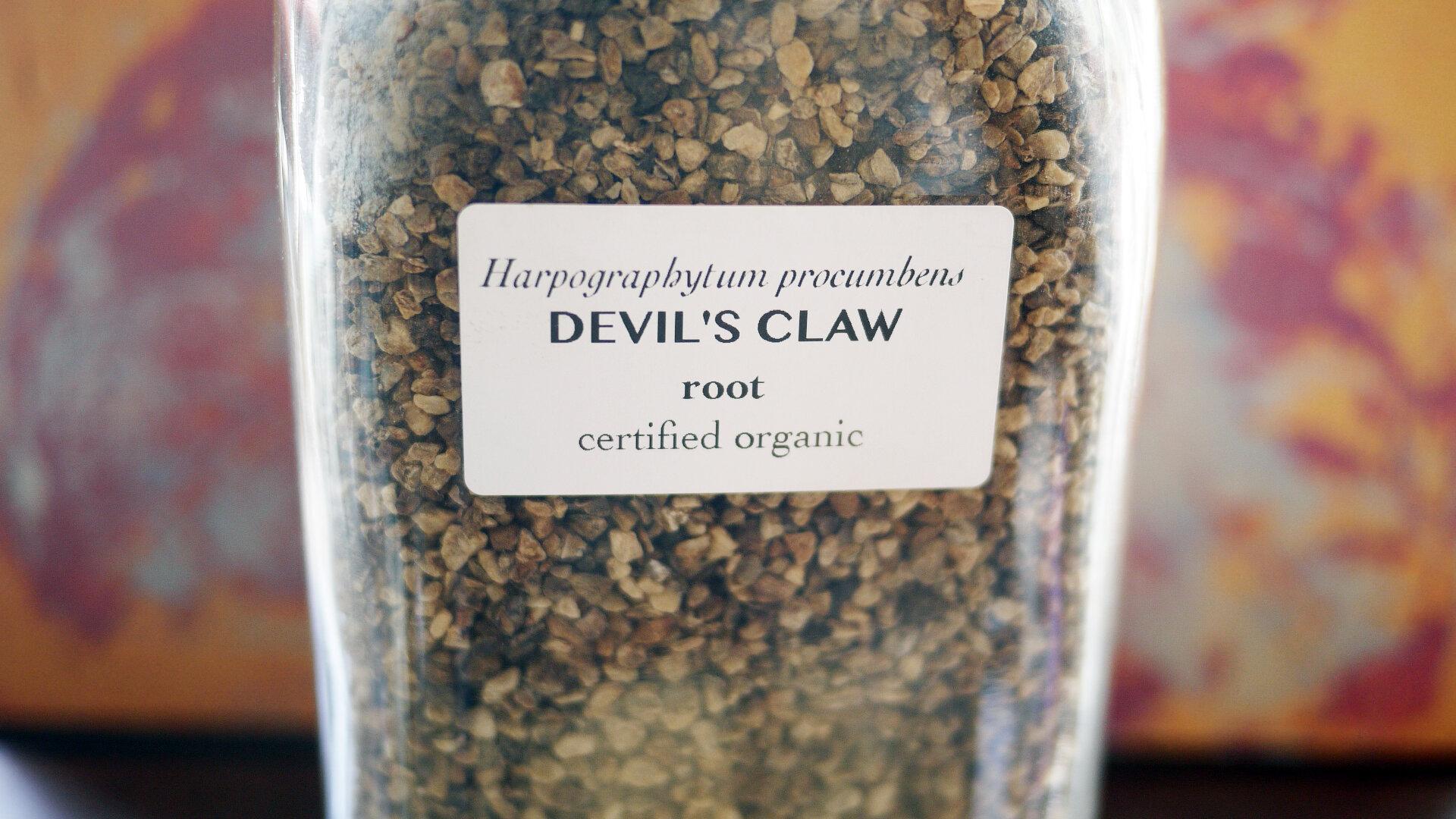 Devilsclawroot.jpg