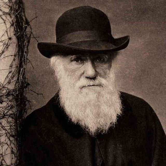 Happy Birthday Darwin bae, thanks for everything.