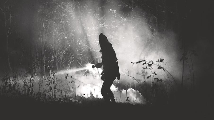 Haberkern_woodsLight1_905_905.jpg