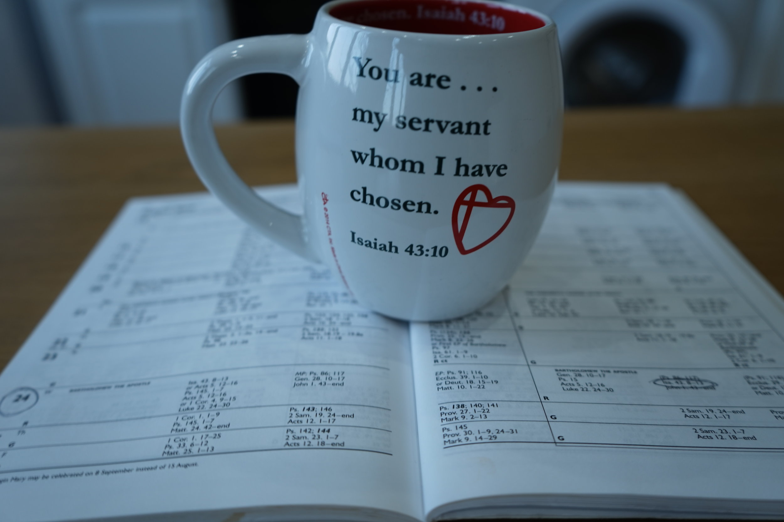 P.S. Here's the photographic evidence of what I mentioned in the audio training...The mug & the Bible reading! Confirmation indeed.