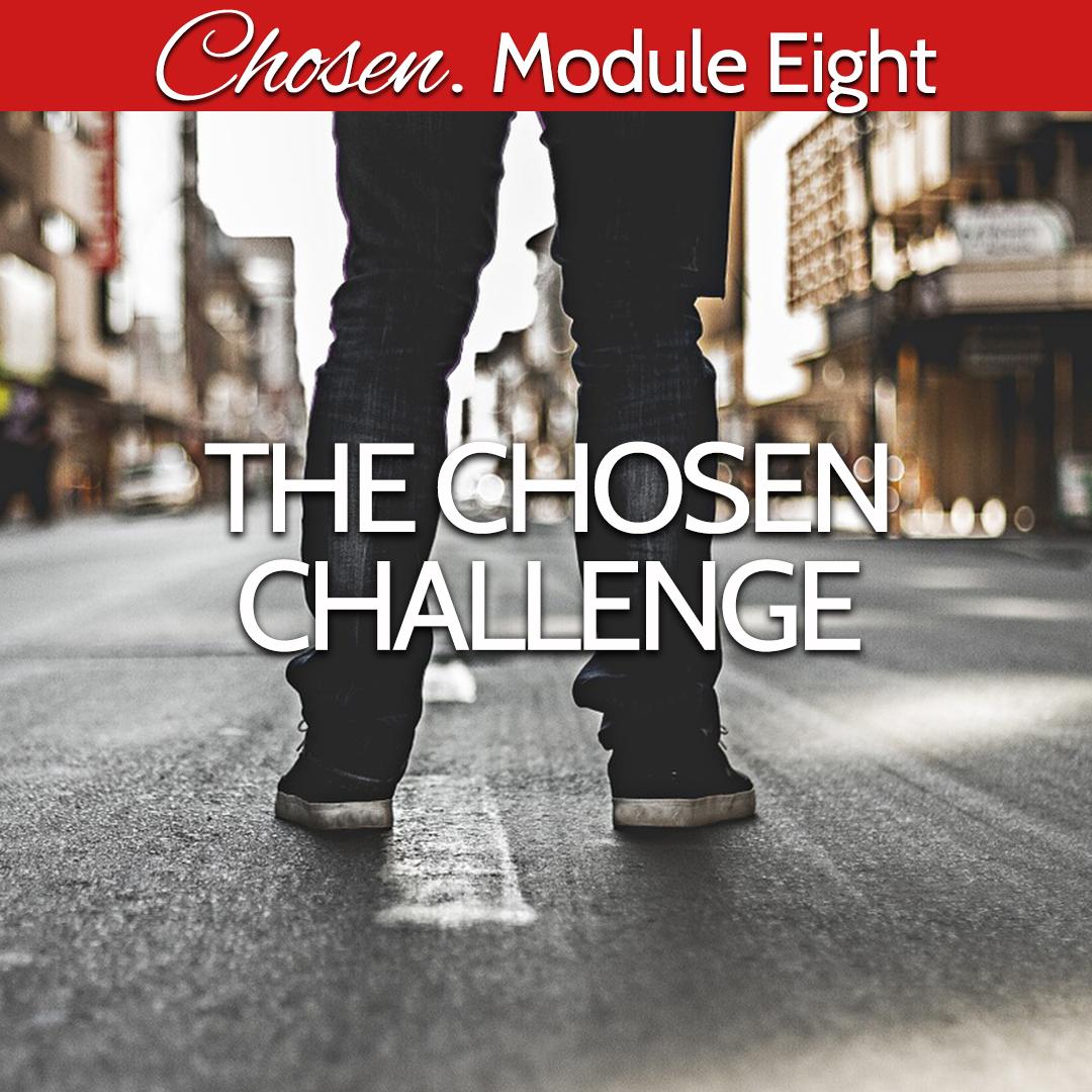Module Eight the chosen challenge.jpg