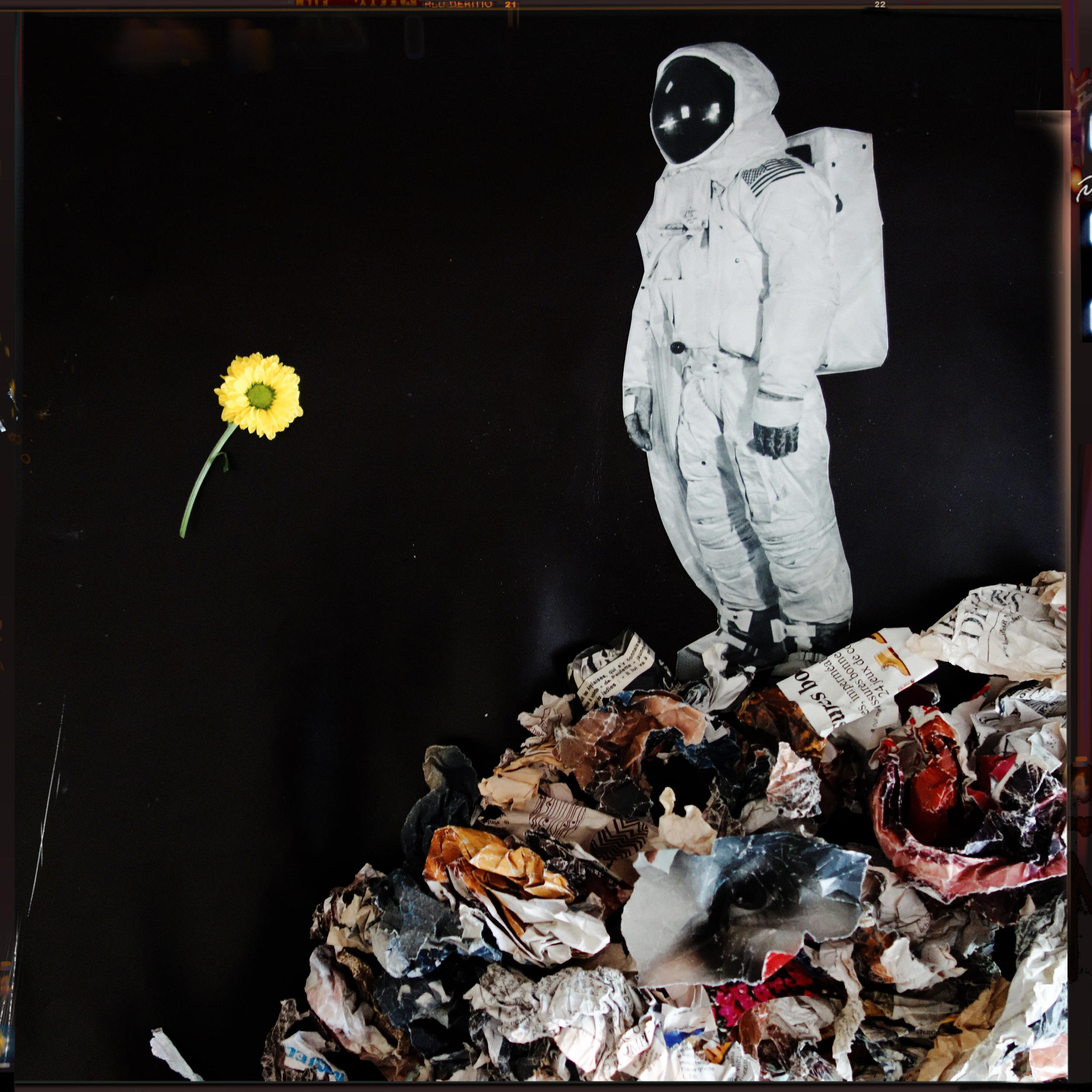 spaceflower2.jpg