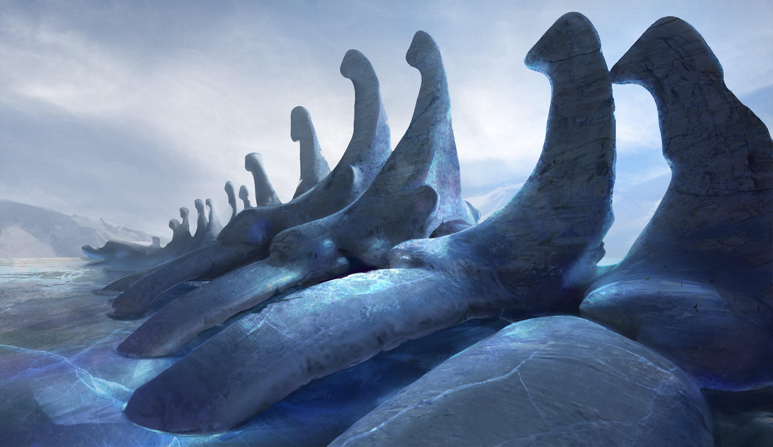 The Whale Spine 2.jpg