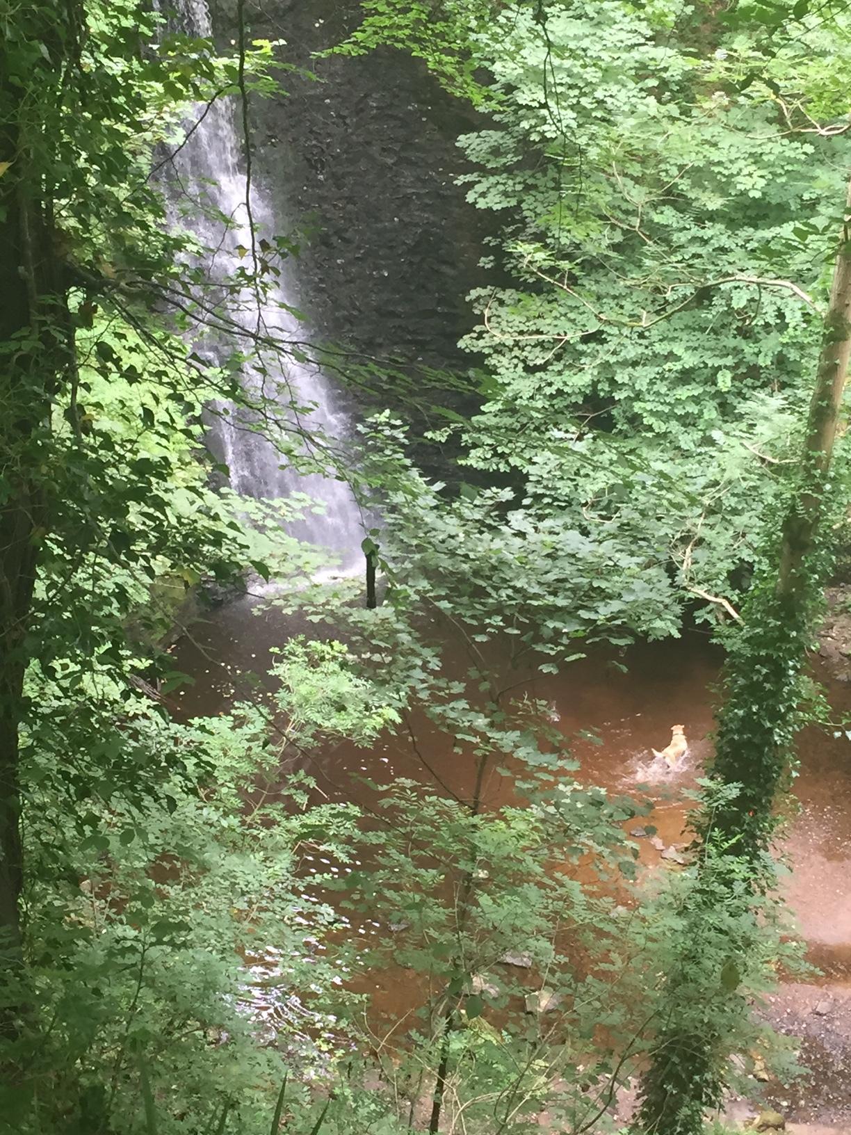 Falling Floss Waterfall