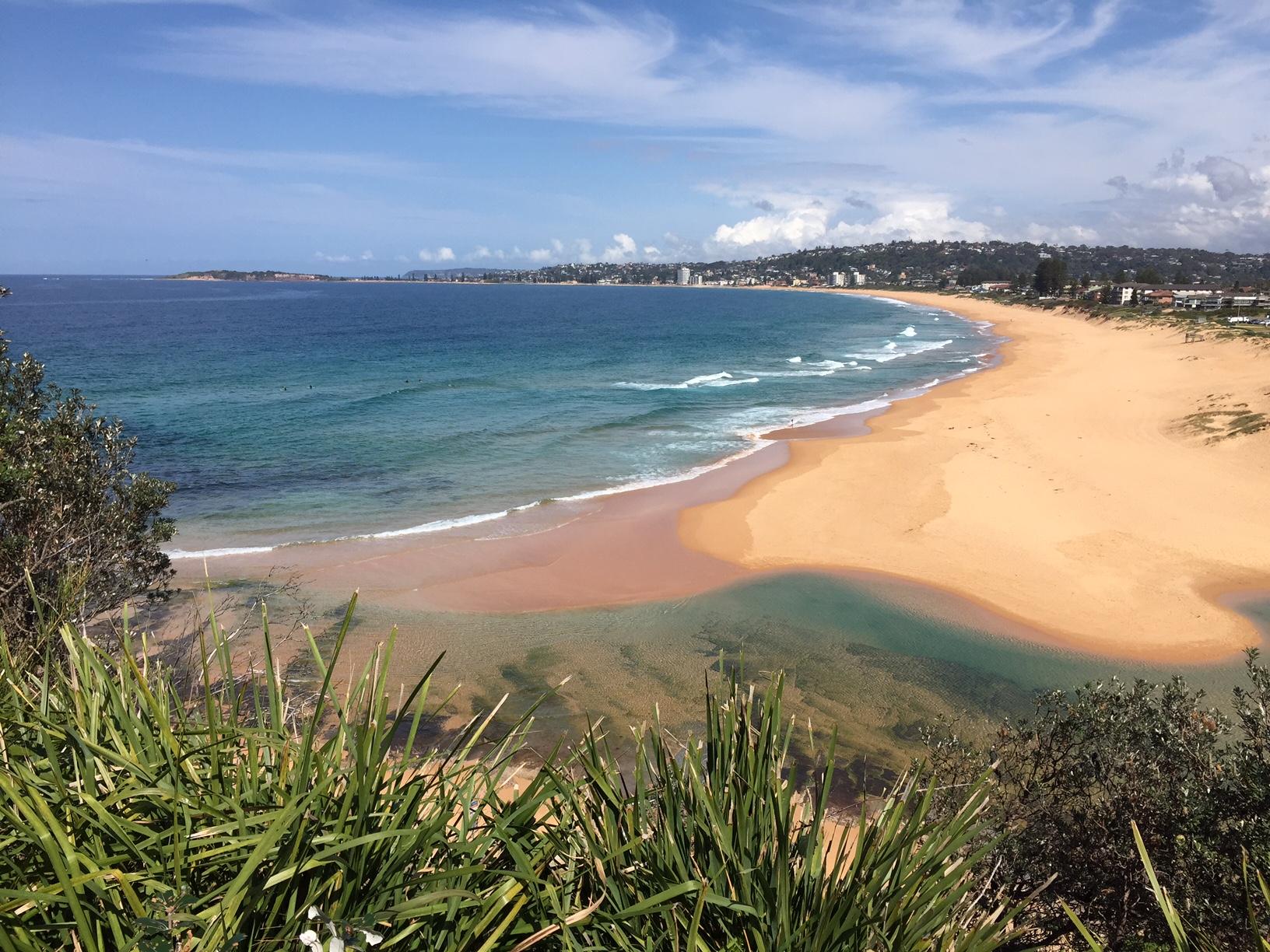 Narrabeen and Collaroy beaches