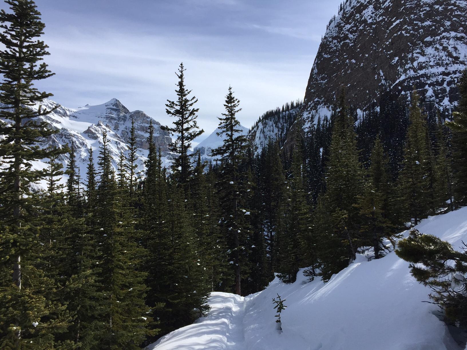The path to Agnes Lake