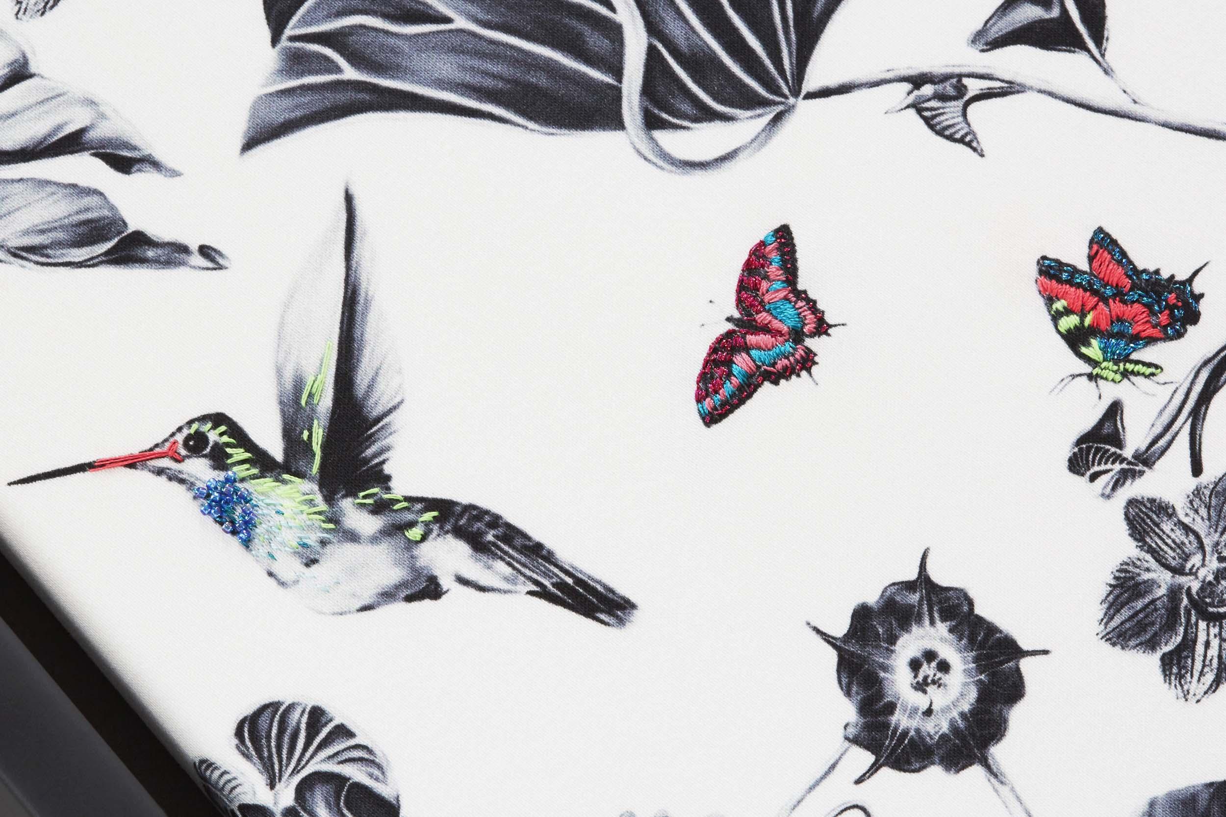 multi-hummingbirds-3.jpg