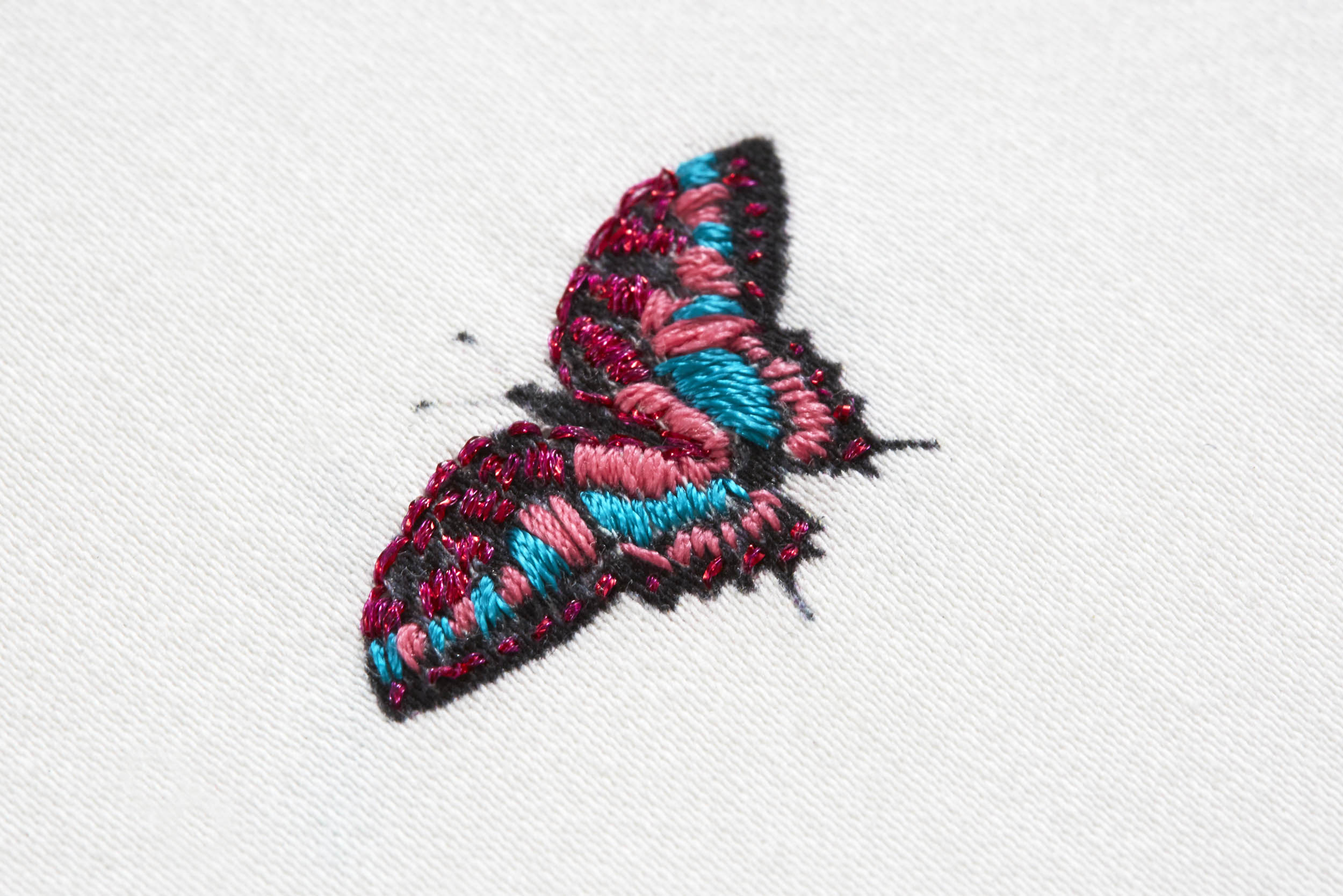multi-hummingbirds-8.jpg