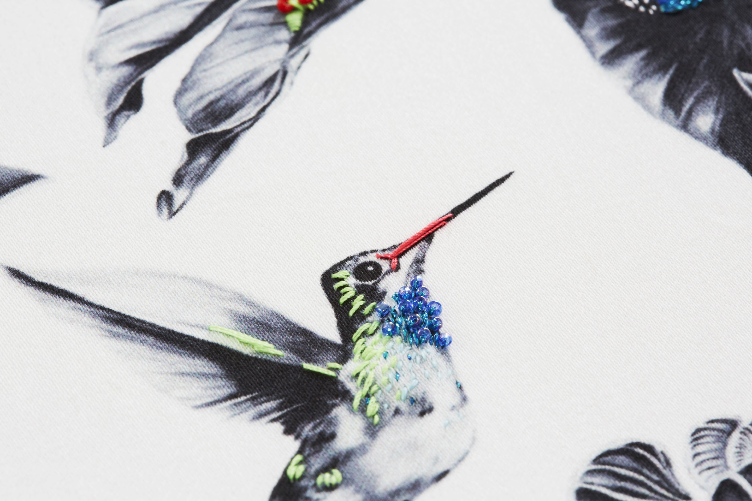 multi-hummingbirds-9.jpg