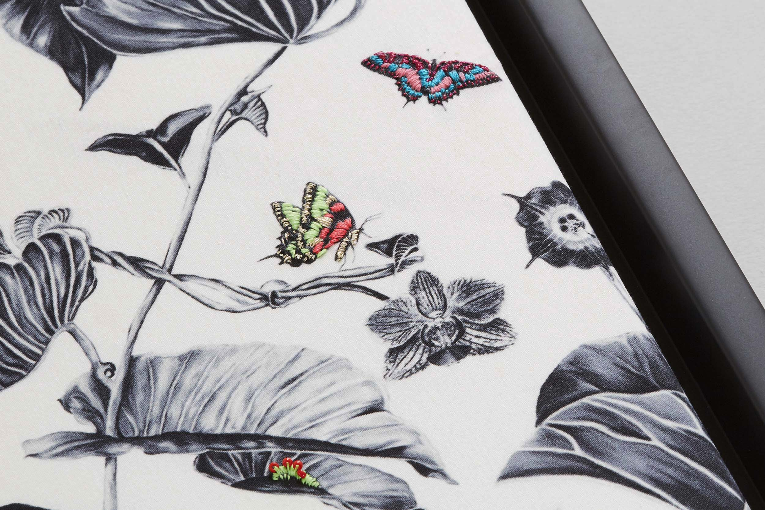multi-hummingbirds-2.jpg