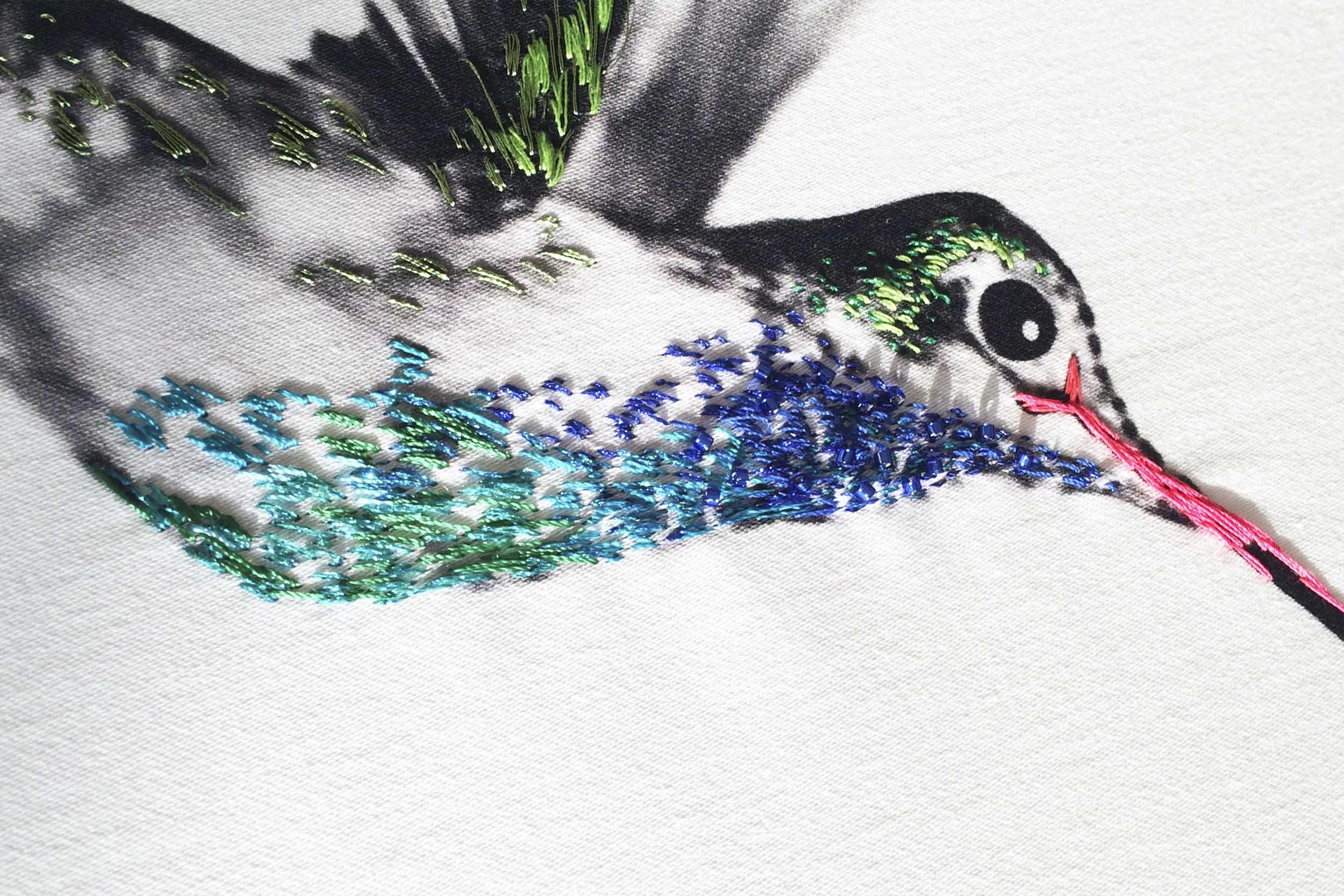 multi-hummingbirds-16.jpg