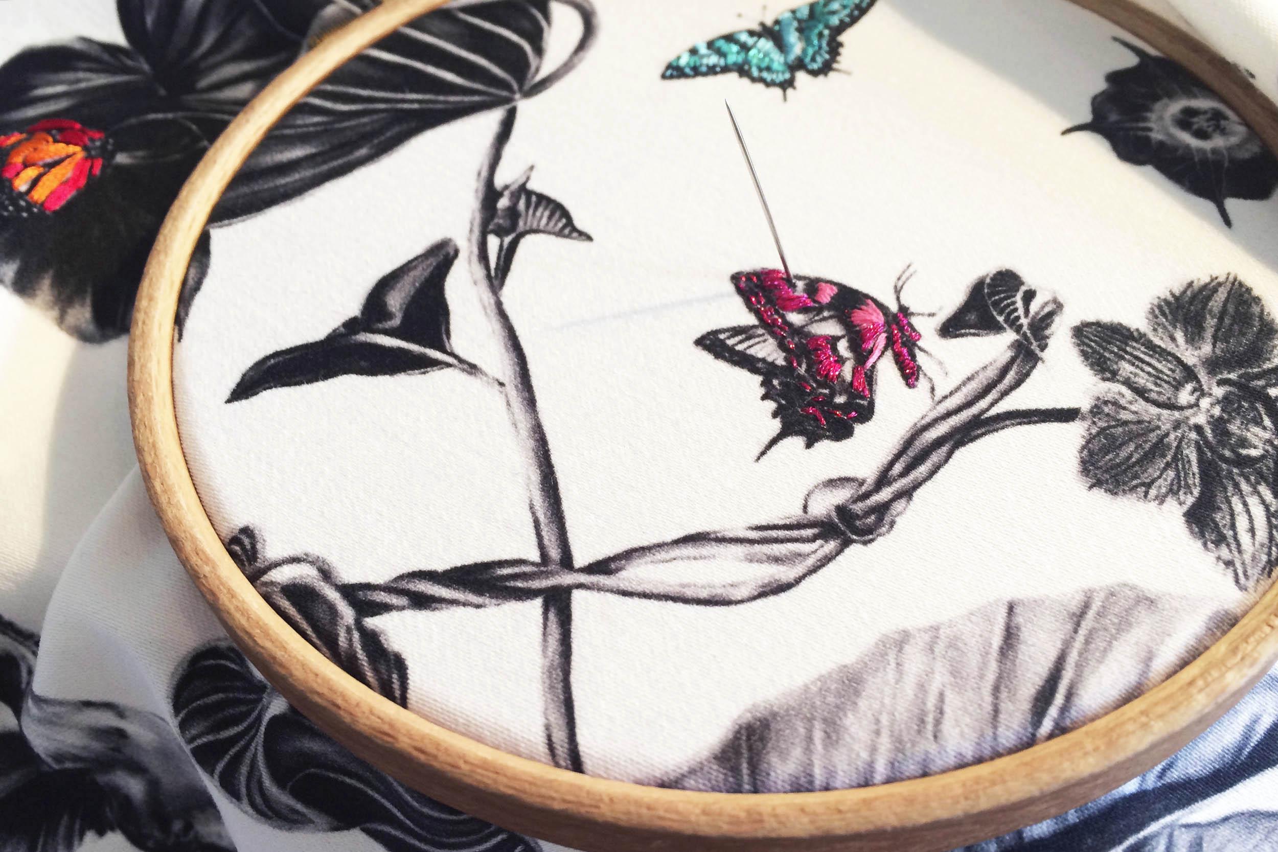 multi-hummingbirds-17.jpg