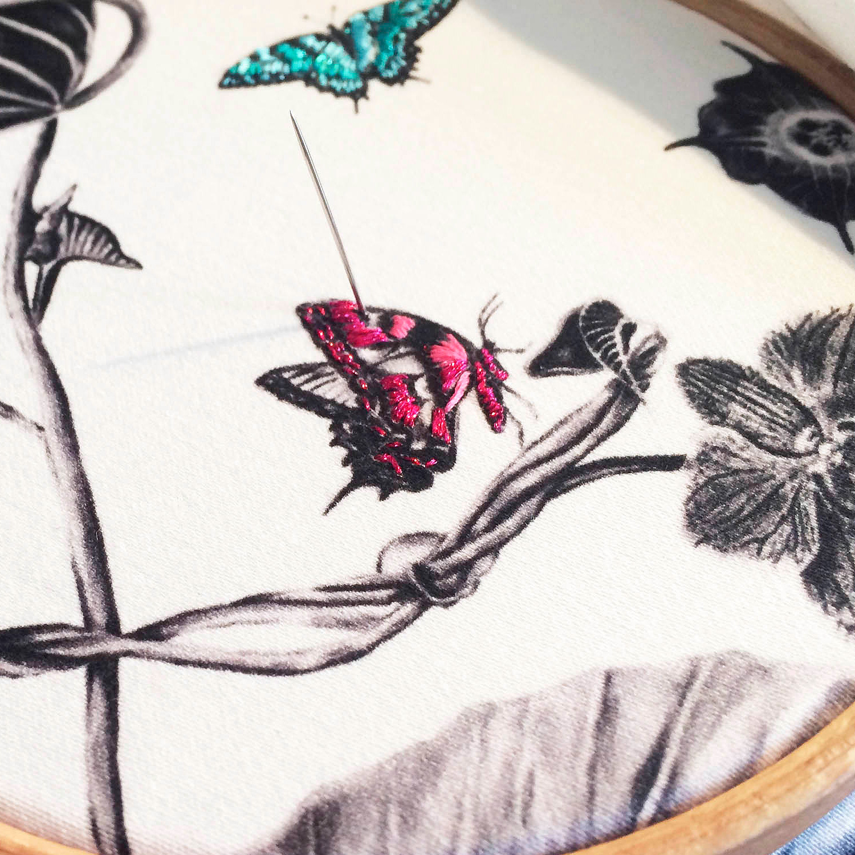 multi-hummingbirds-cushion-5.jpg