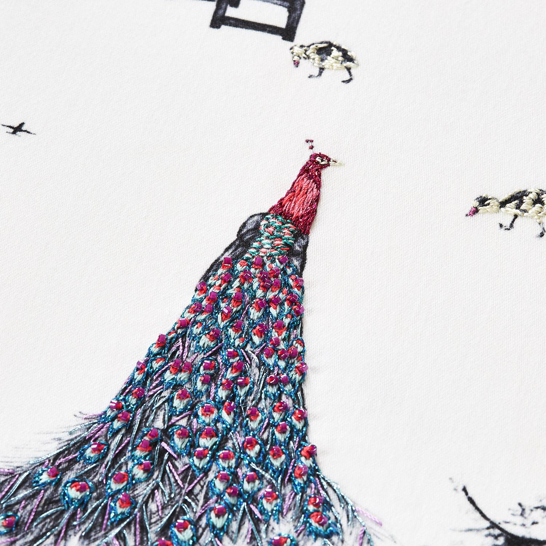 pink-kew-peacocks-artwork-4.jpg