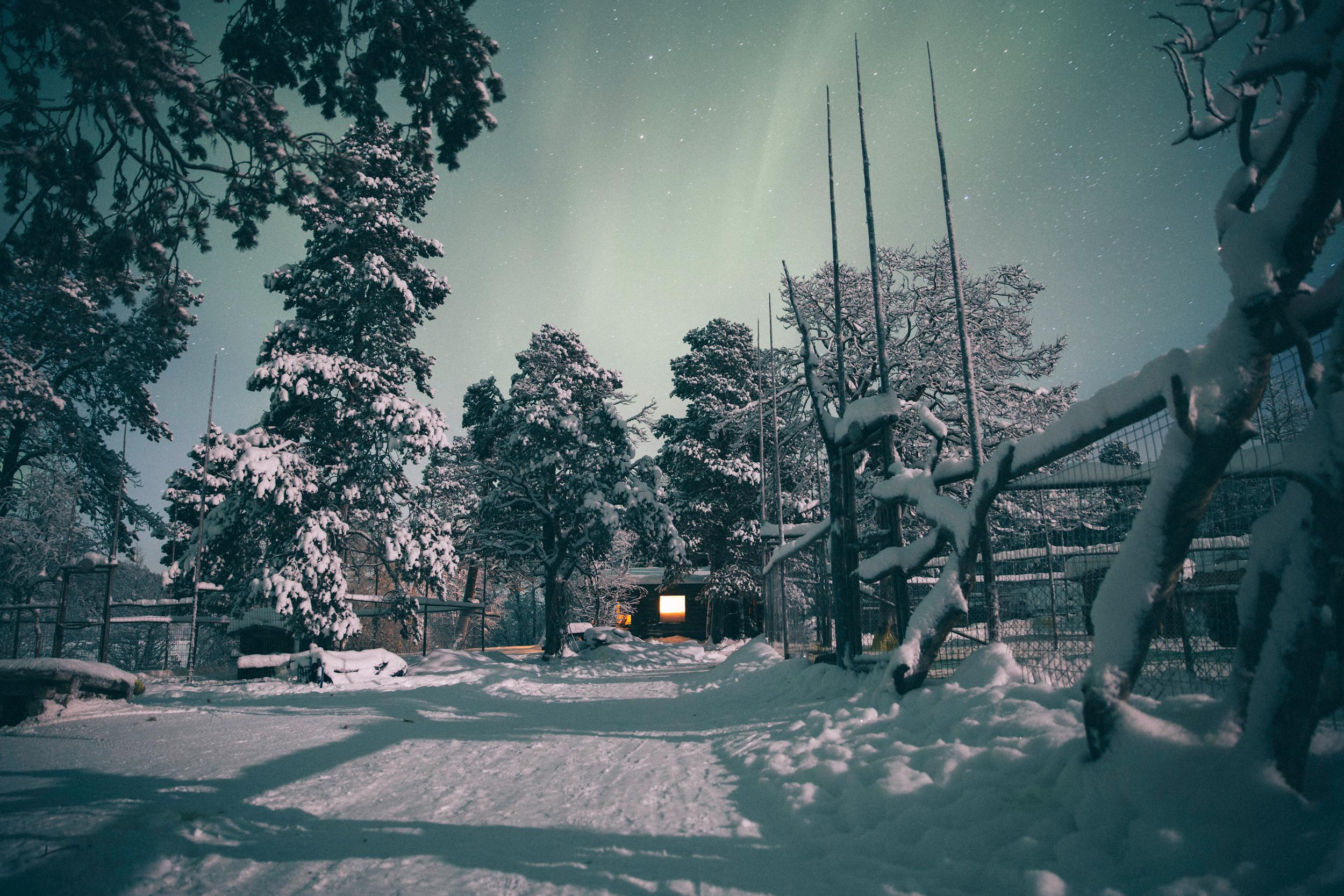 Arctic Cold Squarespace-31.jpg
